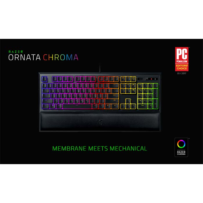 Razer_Ornata_Chroma