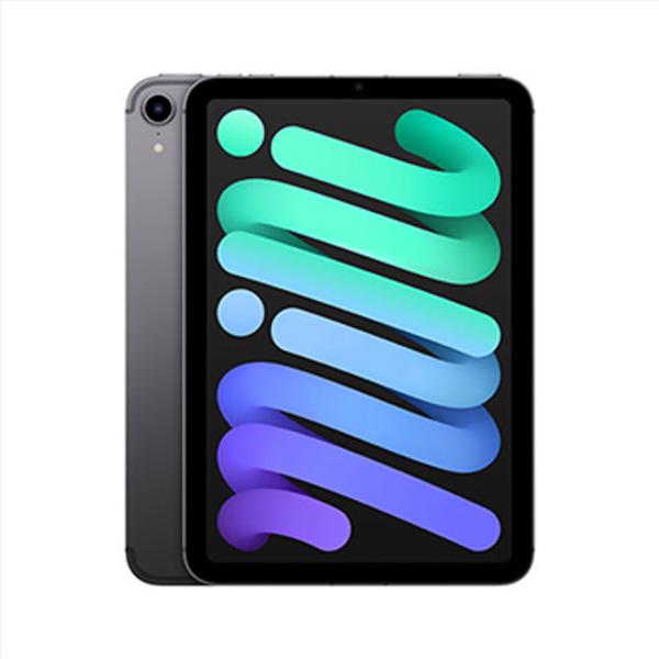 Apple iPad mini (2021) Wi-Fi + Cellular 64GB, space gray MK893FD/A