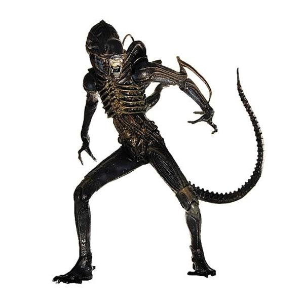 Alien Warrior (Aliens)
