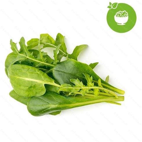 Smart Garden Mix zelených šalátov 3-pack