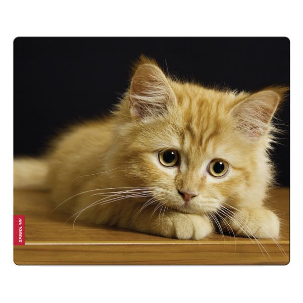 Speed-Link Silk Mousepad, baby cat