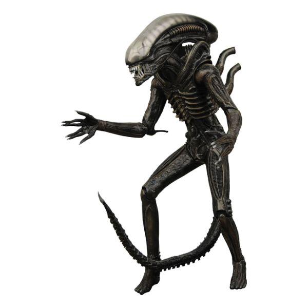 Xenomorph (Aliens)
