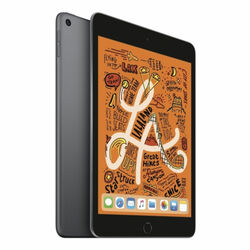 Apple iPad Mini (2019), Wi-Fi + Cellular, 64GB, Space Gray na progamingshop.sk