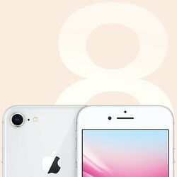 Apple iPhone 8 64GB Silver na pgs.sk