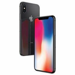 Apple iPhone X, 256GB | NEFUNGUJE FACE ID | Space Gray, Trieda B - použité, záruka 12 mesiacov na progamingshop.sk