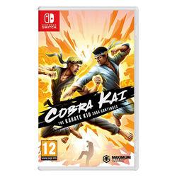 Cobra Kai: The Karate Kid Saga Continues na progamingshop.sk
