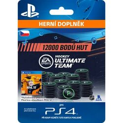 NHL 19 Ultimate Team - 12000 Hockey Points CZ na progamingshop.sk